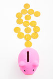 Piggy bank and dollar sign Stock Photo