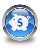 Piggy bank dollar sign icon glossy blue round button Stock Photography
