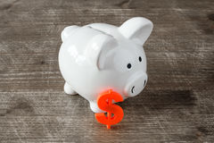 Piggy bank with  dollar sign Stock Photography