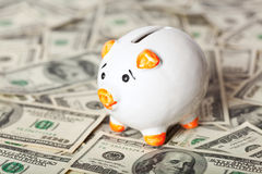 Piggy bank on dollars Stock Images
