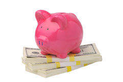 Piggy bank on dollars Stock Image