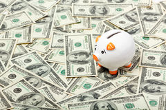 Piggy bank on dollars Stock Photography
