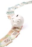 Piggy Bank and dollars Royalty Free Stock Photography