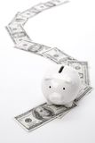 Piggy Bank and dollars Stock Photos