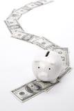 Piggy Bank and dollars Stock Photos