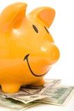 Piggy bank and dollars Stock Photo