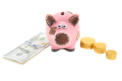 Piggy bank with dollars Stock Image