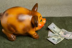 Piggy bank and dollars on a green background royalty free stock photos