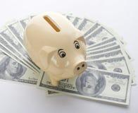 Piggy bank among dollars isolated on white Stock Photography