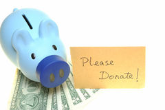 Piggy bank for donate Stock Images
