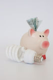 Piggy bank and a energy-saving bulb Stock Photography
