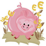 Piggy bank,euro Royalty Free Stock Images