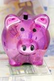 Piggy Bank with Euro banknotes Royalty Free Stock Photos