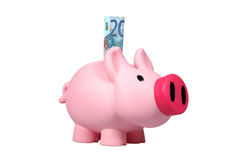 Piggy bank with Euro banknotes Royalty Free Stock Photography