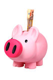 Piggy bank with Euro banknotes Royalty Free Stock Image
