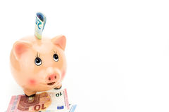 Piggy bank and Euro banknotes, on white Royalty Free Stock Photos