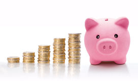 Piggy bank with euro coin stacks - concept of increase royalty free stock images