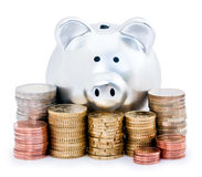 Piggy bank and Euro coins Royalty Free Stock Image
