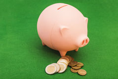 Piggy bank with  Euro Coins Stock Image