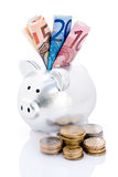 Piggy bank and Euro money Royalty Free Stock Photography