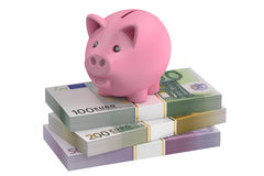 Piggy bank and euro packs, 3D rendering Stock Images