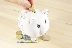 Piggy bank and euro Royalty Free Stock Photo