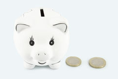 Piggy bank and euro Royalty Free Stock Image