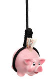 Piggy bank with european banknote and black rope Royalty Free Stock Image
