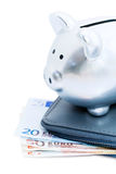 Piggy bank on euros Stock Images