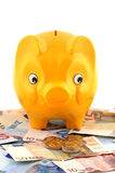 Piggy bank and Euros Stock Images
