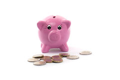 Piggy bank with euros coins Royalty Free Stock Image