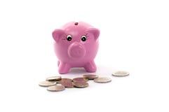Piggy bank with euros coins. Pink ceramic piggy bank with  euros coins isolated on white Royalty Free Stock Image