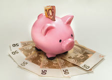 Piggy bank with euros. On white background Royalty Free Stock Image