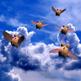 Piggy Bank Exodus 2. Five Piggy Banks flying away with your investments Stock Illustration