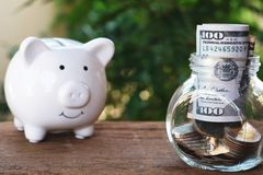 Piggy bank eyes on glass of money jar. Saving money concept. Copy space stock images