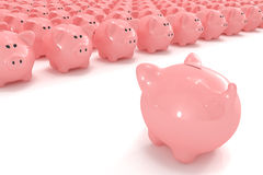 Piggy bank facing hundreds of other piggy banks Royalty Free Stock Image