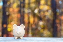 Piggy bank on a fall forest background. With fall savings theme royalty free stock photo