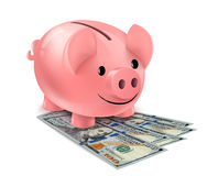 Piggy bank and fan of dollars banknotes Stock Image