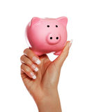 Piggy Bank in Female Hand Stock Photos