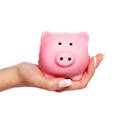 Piggy Bank in Female Hand isolated Royalty Free Stock Photo