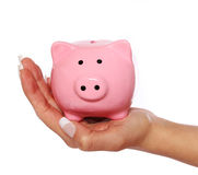 Piggy bank in female hand isolated on white Stock Photography