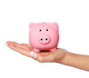 Piggy bank in female hand isolated on white. Savings Stock Images