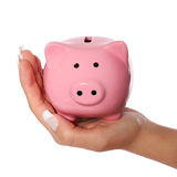Piggy bank in female hand isolated on white. Savings Royalty Free Stock Image