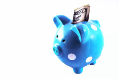 Piggy Bank with a Fifty Stock Images