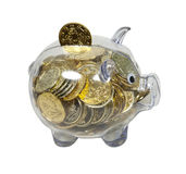 Piggy Bank filled with Gold Coins Stock Image