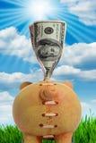 Piggy Bank - Financial Crisis Royalty Free Stock Image