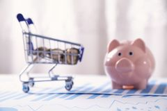Piggy bank, financial graphs and shopping cart. Business concept stock photo