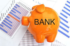 Piggy bank. On a financial report Royalty Free Stock Photography