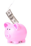 Piggy bank fishing Royalty Free Stock Image