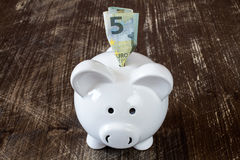 Piggy bank and five euro banknote. Stock Photography